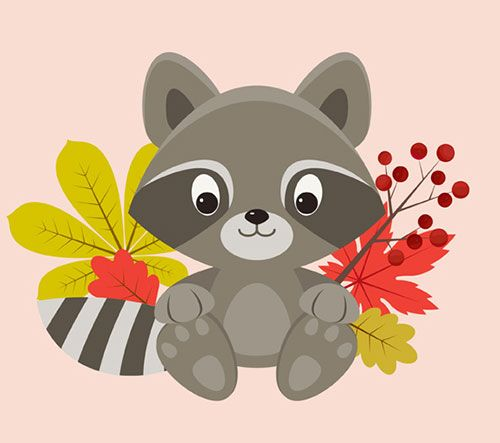 Raccoon-Character-Adobe-Illustrator-tutorial
