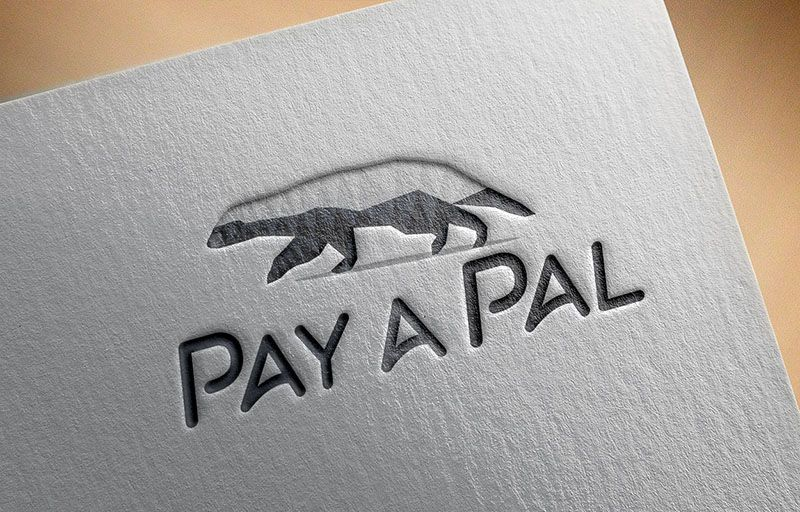 pay-a-pal-polygon-logo